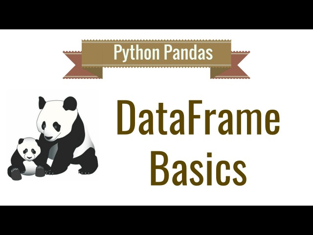 Python Pandas Tutorial 2 Dataframe Basics