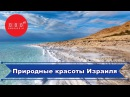 Экскурсии по красивым местам Израиля: Мертвое море, Крокодиловая ферма, Большой кратер, кибуцы