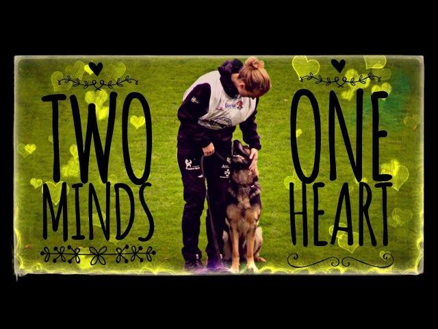 Two Minds One Heart Dog Sport Inspiration Motivation Video WUSV 2017 Compilation