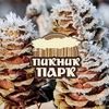 Зимний Пикник-парк