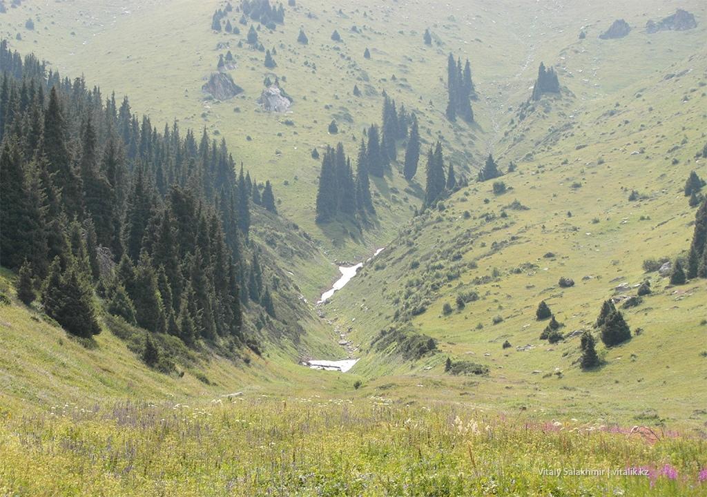 Камень в горах, Кумбель Кок-Жайляу 2018