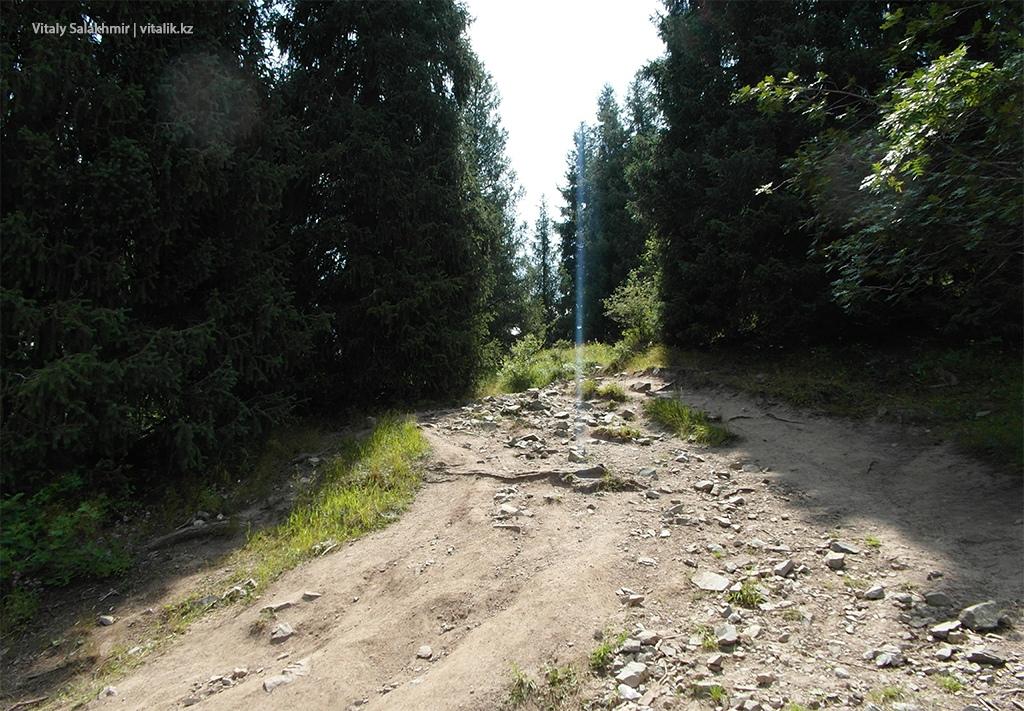 Камни по дороге на Кок-Жайляу 2018 тропа пешком