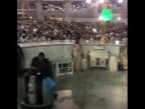pakistani_celebrities_world_Bhzj7m6Auoe.mp4