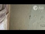 Египет. Осирион в Абидосе-Egypt. Osirion in Abydos