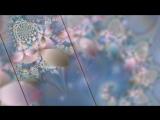 Исцеляющая музыка-Программа Исцеления Дельта волнами