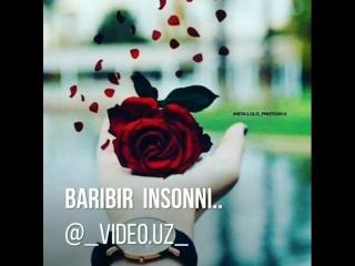 _video.uz____BmKqE4vj-Kd___.mp4