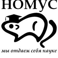 Логотип НОМУС ВолгГМУ