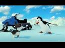 Эскимоска 3 сезон | Приключения Афи (20 серия) | Мультик про северный полюс