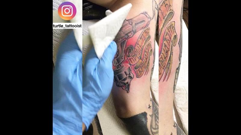 Eikon symbeos by @turtle_tattooist
