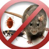 Уничтожение насекомых и грызунов в Москве