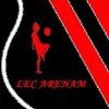 Arena-Dfk Detsky-Futbolny-Klub