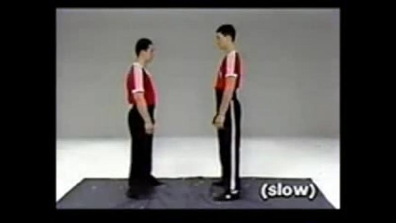 Ян Джумин - Шаолинь Цинна - искусство захватов и заломов (Comprehensive Applications of Shaolin Chin Na - Yang Jwing-Ming)
