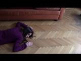 Реакция кота на фейковую смерть (новый тренд)