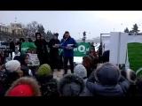 Прямая трансляция митинга «Зеленой коалиции» в защиту парков и скверов Петербурга и Ленобласти