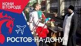 Кони в городе: Ростов-на-Дону