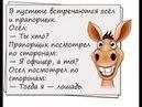 Анекдоты от Саныча - Осел и прапорщик.