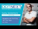Sasha Goldshtein Debugging and Profiling NET Core Apps on Linux
