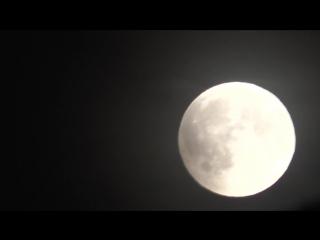 Отдалась под луной .