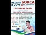 Чемпионат СЗФО по боксу среди мужчин 19-40 лет. 15-19 мая 2018г. 1 день.