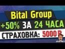 НОВИНКА BitalGroup Зарабатываем 50% к депозиту за 24 часа Страховка 5000 руб ArturProfit