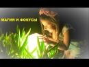 Забавные ФОКУСЫ от маленького гения видеомонтажа! Детские фокусы и забавная маг