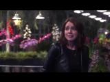 Однажды в сказке | Промо к 7.11 «Секретный сад»