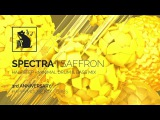 Spectra Saffron - Halfstep + Minimal Drum &amp Bass