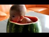 Ребенок ест арбуз [480]