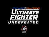 27й сезон The Ultimate Fighter на Матч! Боец