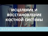 Ольга Комарова. Исцеление и восстановление костной системы Зубы, суставы, позвоночник