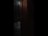Aleksandra Oborina — Live