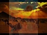 Ya Rayah - Golden Gypsies Испанская гитара Группа Ciganos D'Ouro