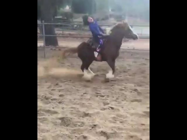 """⚠️Back Away From The Horse⚠️ on Instagram """"I don't know if I should laugh, cry or cringe. 😳 Poor kid. PSA , stop calling a child things like """"ret..."""
