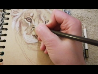 #горшунова_надежда#graphic #draw #drawing #drawings #wild #catportrait #animals #animal #рисунок #рисую #рисуюкаждыйдень #цветны