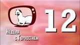 Неделя с Горностаем №12, 11.04.18