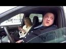 СТОП-ХАМ легавый беспредел полицейский с рублевки убрал машину
