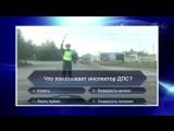 КВН 2017. Высшая лига. Первый полуфинал. Видеоблог. «Проигрыватель» (Тамбов)