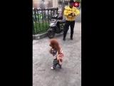 Это невероятно! Собака ходит и бегает  только на двух задних лапах!