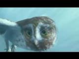 Vargo - The Moment - YouTube