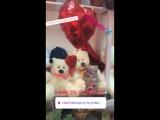 Гелиевые шары, мягкие игрушки и цветы. 14 февраля-ДЕНЬ ВЛЮБЛЁННЫХ. Приезжаем в гости, или просто делаем заказ :+375295455032, а