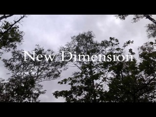 03. New Dimension - Tears Of The Forests