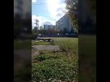 Новый парк под ЛЭП в Братеево