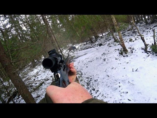 Охота 128 удачные выстрелы на загонной охоте