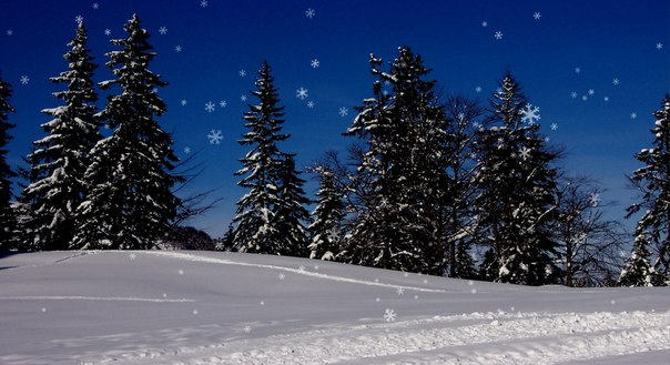Зимняя Картинка Обои На Экран
