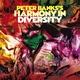 Peter Banks - The Klincher
