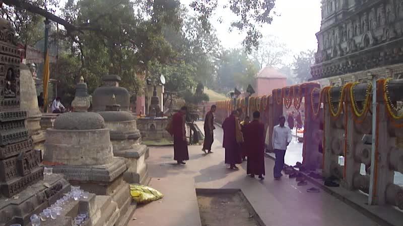 Дорзонг Ринпоче в Бодхгае. 2011 г.