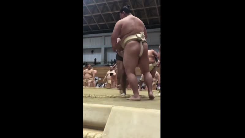 春巡業五條市 - 幕下力士に胸を出す御嶽海正代sumo 相撲