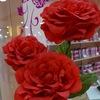 ROSE of BULGARIA 72