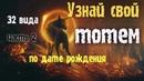 Узнай свое животное по дате рождения Часть 2 Зороастрийский гороскоп тотемы гороскопы