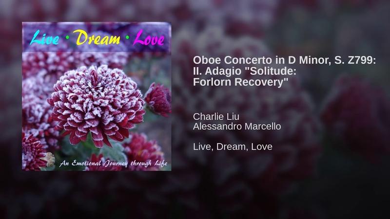 Oboe Concerto in D Minor S Z799 II Adagio Solitude Forlorn Recovery